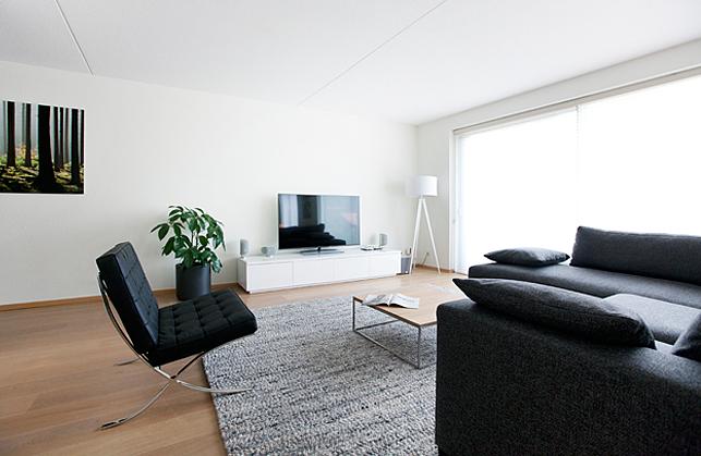 Het ontwerp en realisatie van een woonkamer interieur for Design interieur