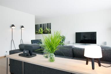 Het ontwerp en realisatie van een woonkamer
