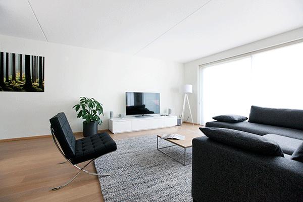 Het ontwerp en realisatie van een woonkamer for Woonkamer design